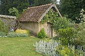 """Flowered massif and garden hut. Grassy path lined with perennials. Bordered with Wolly hedgenette (Stachys bysantina) and Alpine lady's mantle (Alchemilla mollis). """"Jardin de la Chaux"""", Burgundy, France"""