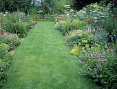 Lawn path and perennial beds with Endress cranesbill (Geranium endressii) 'Wargrave Pink', Private garden, Belgium