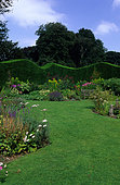 Lawn driveway. Perennials bed. Hedge of Leyland Cypress (Cupressus leylandii). Stourton, England