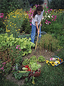 Vegetable garden work : Young girl hoeing in a flowery vegetable garden in summer