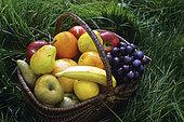 Basket of fruit, Apple, Pear, Grape, Banana, Orange