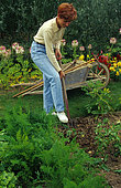Woman digging in a vegetable garden