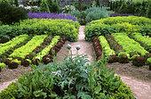 Vegetable garden. Row of salads. Floral park of haute-Bretagne, France