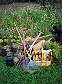 Garden tools in a vegetable garden