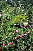 Organic flowering vegetable garden.