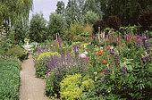 Garden scene with Catnip (Nepeta sp), Lupine (Lupinus sp), Foxglove (Digitalis sp), Lady's mantle (Alchemilla sp). Private garden, Belgium.