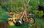 Gardening tools in a vegetable patch: wheelbarrow, watering can, fork ...