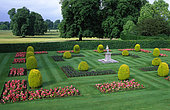 Lawn, begonia flowerbed (Begonia sp), and yew balls (Taxus baccata) 'Standishii'. Kingstone Lacy. England