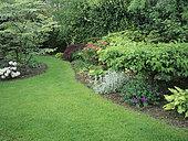 Turfed alley and flower bed with Geranium (Geranium sp), EpiaireBetony (Stachys sp), Hosta (Hosta sp), Private garden of Mr Leclercq, Belgium