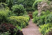 Gravelled alley with pot and bed of perennials and shrubs, Alchemilla (Alchemilla sp), Kolkwitzia (Kolkwitzia amabilis), Biggar Park, England