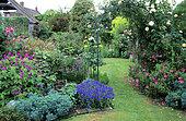 Garden entrance, Armenian Geranium (Geranium psilostemon), Rockrose (Cistus sp), Rose (Rosa sp) 'Sombreuil', Walnut tree Garden, Kent, England