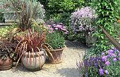 Terrace with summer pots: Coralbell (Heuchera sp) and New Zealand Flax (Phormium tenax)