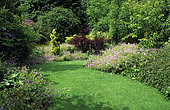 Rustic turf and bed of Geraniums and shrubs