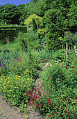 Perennial Flowerbed with Cinquefoil (Potentilla sp), Sage (Salvia sp), Bellflower (Campanula sp), Chilcombe, Dorset, England, Spring-Summer