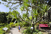 Botanical Garden Deshaies located in the town of Deshaies, Basse-Terre, Guadeloupe. Property of 7 hectares that belonged to different owners including Coluche who bought the property in 1979