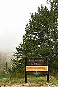 Forest of the Eygues in foggy weather, panel of the National Forest Office with PEFC certification. Habitat particularly remarkable, this forest inhabits Spanish Juniper (Juniperus thurifera) and Snowy Mespilus (Amelanchier ovalis). France