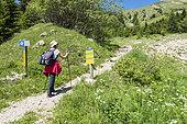 Hiking on the GR, Vanoise, Alpes France