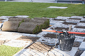 Realization of a tiling and setting up rolls of grass in a garden, spring, Pas de Calais, France