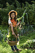 9 years old girl with basket an clogs harvesting vegetables in vegetable garden, Belfort, Territoire de Belfort, France
