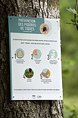 Sign on a tree, Prevention of tick bites (Ixodes ricinus) in forest, under the Ballon de Servance, Plancher les Mines, Haute-Saone, Vosges, France