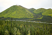 Dalton Highway : from Fairbanks to Prudhoe Bay, Trans Alaska Pipeline System (TAPS), In the fall the pipeline in its flight south of the Brooks Range (Brooks Range) and Atigun Pass (Atigun Pass, mile 244), Alaska, USA