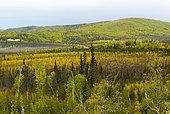 Dalton Highway : from Fairbanks to Prudhoe Bay, Trans Alaska Pipeline System (TAPS), Alaska, USA