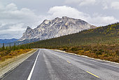 Dalton Highway : from Fairbanks to Prudhoe Bay (mile 204) Mount Sukakpak 1338 m above sea level, Alaska, USA