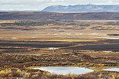 Alaska Range in autumn, Denali Highway: from Paxson to Cantwell, Alaska, USA