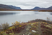 Tangle lake (mile 21), Denali Highway: from Paxson to Cantwell, Alaska, USA