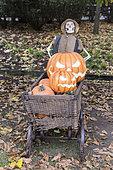 Décoration à l'occasion d'Halloween dans un jardin, Allemagne