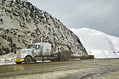 Dalton Highway: Fairbanks to Prudhoe Bay, (mile 244) Atigun Pass 1338 m in fall, Alaska, USA