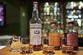 At Edradour Distillery's bar, Highlands, Scotland, United-Kingdom