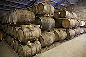 Casks of scotch whisky stored at Edradour Distillery, Highlands, Scotland, United-Kingdom