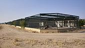 Captive breeding unit of Arabian leopard (Panthera pardus nimr), Saudi Arabia