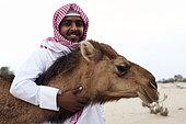 Saudi bedouin with a female dromedary (Camelus dromaderus), Saudi Arabia