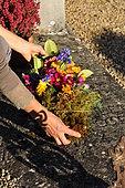 Funérailles écologiques, Bouquet pour une inhumation, France