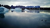 Kayaks and Icebergs, Bear's Archipelago, East Coast Greenland