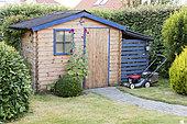 Hollyhock in front of a garden shed, summer, Pas de Calais, France