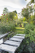 Pontoon leading to a small garden, summer, Provence, France