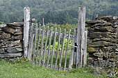 Old wooden fence gate closing a garden in the Cantal, Auvergne, France
