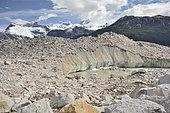 Glaciar Exploradores, end of the glacier and frontal moraine, Laguna San Rafael National Park, XI Region of Aysén, Chile