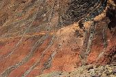 Roche des Islas Desertas, Réserve des phoques moines, Madère, Portugal.