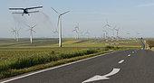 Field of wind turbines in intensive cereal crops, Danube Delta, Romania