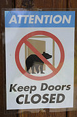 Grizzly (Ursus arctos horribilis) sign, Katmai National park Alaska USA