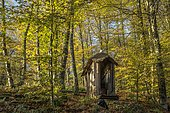 Small wooden shelter for dry toilets, garden in autumn in an undergrowth, Ariège, France