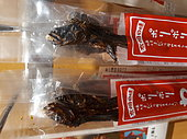 """Warasebo (Odontamblyopus lacepedii), Kyushu Island, Japan, dried fish marketed, to be eaten, in a local shop in Japan. This long-lived fish lives in the mud. His head, and especially his strong teeth, earned him the nickname """"alien"""" in reference to the creature of the science fiction film."""