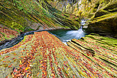 The Cheran gorges in autumn, River draining the Bauges massif, to Hery sur Alby, Savoie, Alps, France