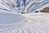 Snow ravine around a sinkhole, Plateau d'Font d'Urle, Sensitive Natural Area, Bouvante, Massif du Vercors, Drome, France