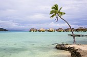 Bungalow at the hotel Tahaa Island Resort, Tahaa, Leeward Islands, Society Islands, French Polynesia