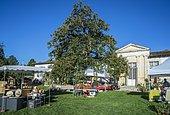 Plantes Fair 2017 at Gaujacq Castle, Landes, France.